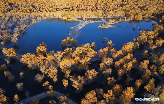 Autumn scenery in Jiuquan, Gansu