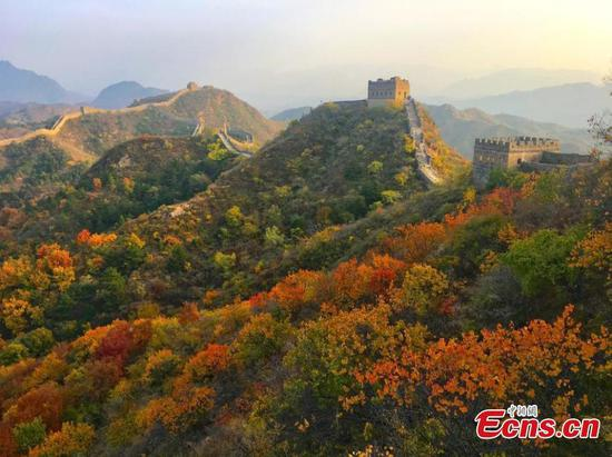 Autumn puts on stunning display at Jinshanling Great Wall