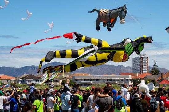 Kites shine at 25th Cape Town International Kite Festival