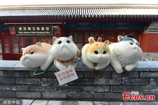 'Paws' at Beijing's Palace Museum woo visitors