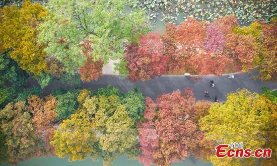 Autumn scenery of Xuanwu Lake in E China