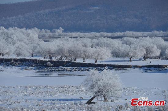 Rime scenery at Heilongjiang River in northeast China