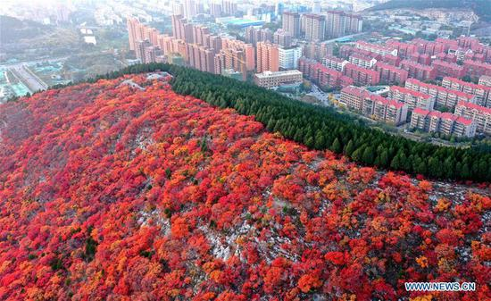 Scenery of Xiezi Mountain in China's Shandong