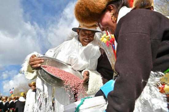 Study reveals how Tibetan people adapt to high altitude
