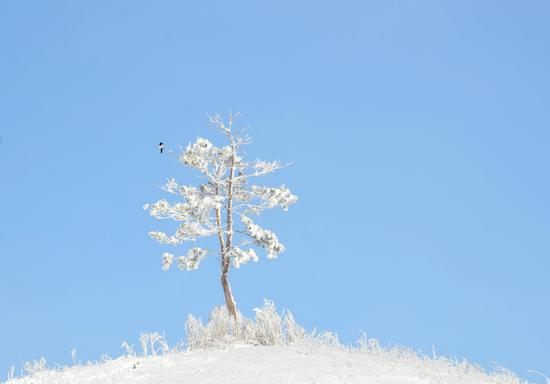 Frozen rime turns Heihe into winter wonderland