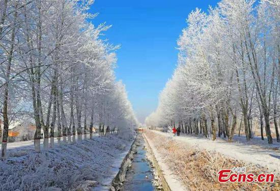 Frost creates crystal world in northern China