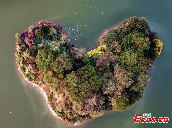 Heart-shaped island boosts tourism in eastern city