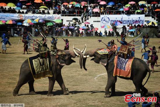 Elephants reenact ancient battle scene in Thailand