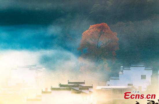 Early winter scenery of Wuyuan county, E China's Jiangxi