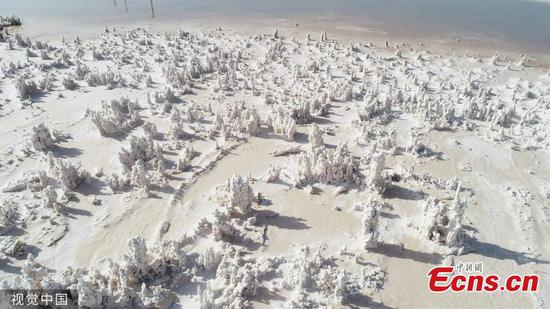 Amazing view of salt fields in Lianyungang