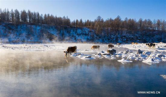 Winter scenery of Halha River in China's Inner Mongolia