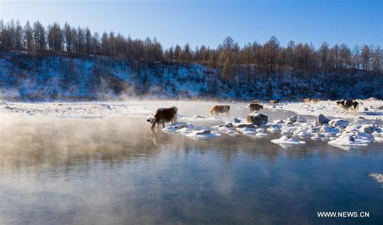 内蒙古哈尔哈河的冬季风光
