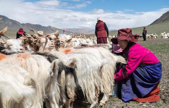 All residents in Tibet lifted out of sickness-related poverty