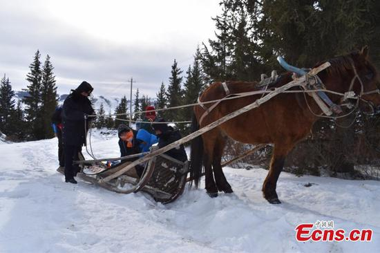 Horse-drawn sleigh helps students to and from school