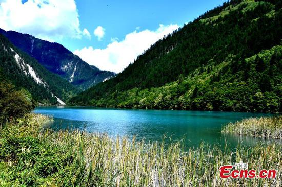 The beautiful landscape of the Jiuzhaigou National Park in Southwest China's Sichuan Province, Sept. 25, 2019.(Photo/ China News Service)