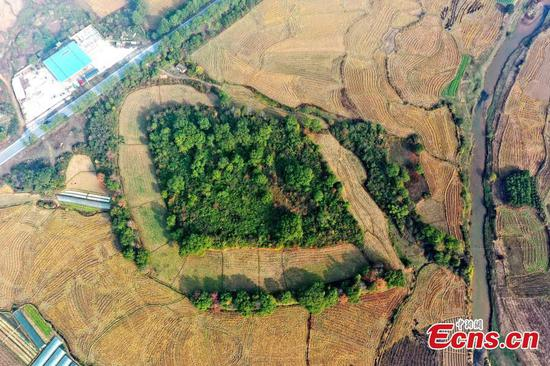 5,000-year-old settlement with moat found in east China