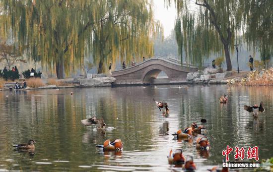 Beijing builds 60 new parks in 2019