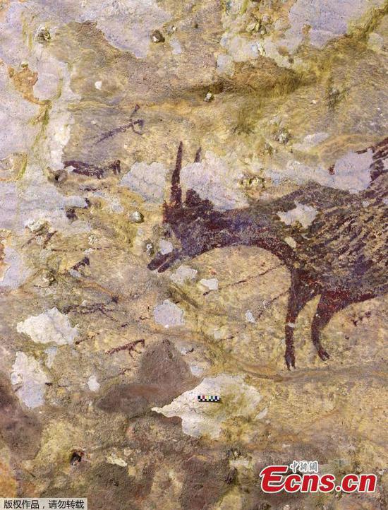 """印尼的洞穴艺术是最早的""""讲故事""""记录"""