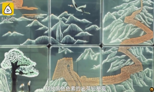 Living fungi is the medium for students' traditional Chinese landscape art