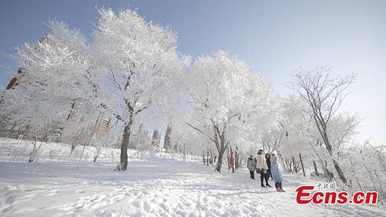 Rime scenery in northeast China's Jilin city