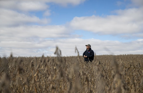 U.S. soybean farmers end tough 2019 with renewed hopes of early resolution to U.S.-China trade dispute