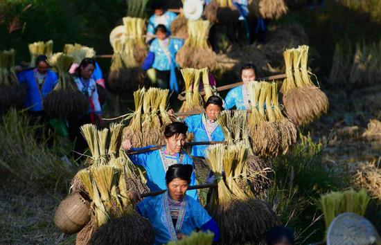 China holds key conference to map out plans for 2020 rural work