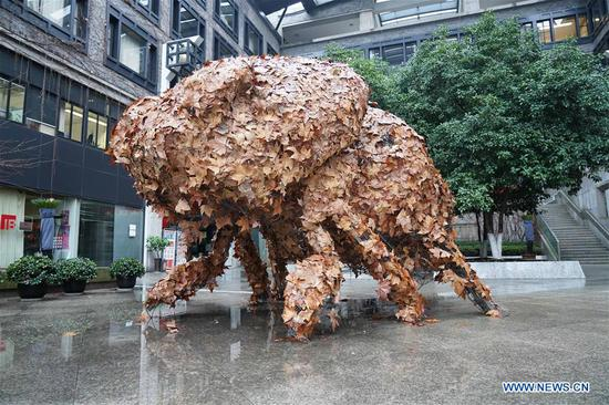 3rd autumn leaves art exhibition opens in Hangzhou
