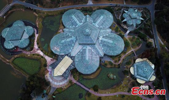 In pics: South China Botanical Garden in Guangzhou