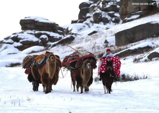 Sawur cultural tourism festival on animal husbandry held in NW China's Xinjiang