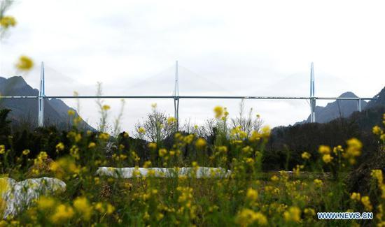 水果机西南贵州省平塘桥的风景