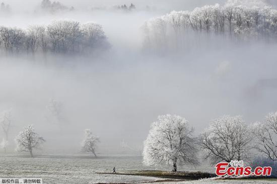 霜在瑞士创造了一个水晶仙境