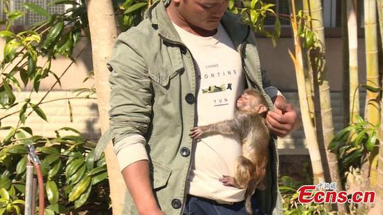 Cuddly and clingy, monkey cub refuses to let go of villager who saves it