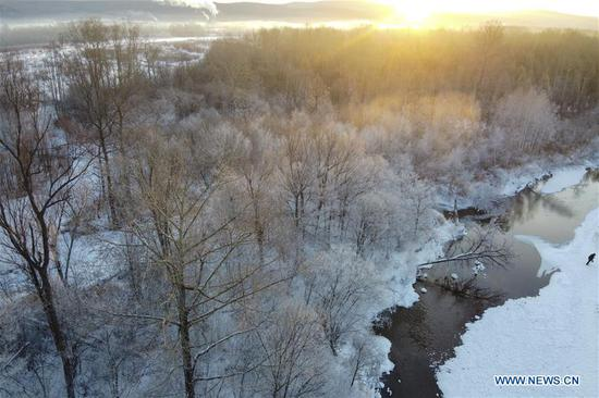 Winter scenery in Dahinggan, northeast China's Heilongjiang
