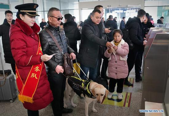 Visually impaired passenger and his guide dog