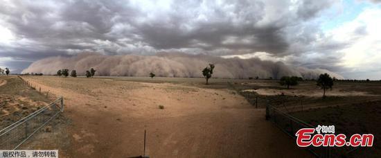 Huge dust storm blankets Australian towns