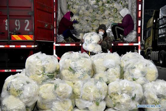 中国寿光启动紧急计划以确保蔬菜供应