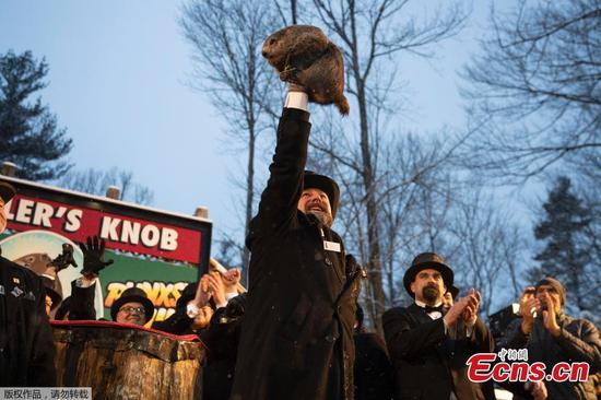 Groundhog Day results 2020: Phil predicts early spring is coming