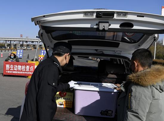 Staff members check the trunk of a car at a wildlife checkpoint at a highway entrance in Yanchi County, northwest China's Ningxia Hui Autonomous Region. (Xinhua/Feng Kaihua)