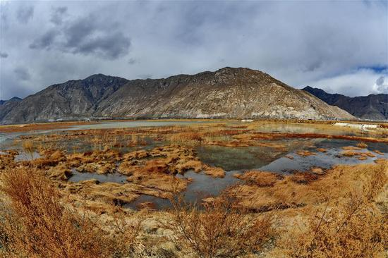 Scenery of Lhalu wetland, 'the Lung of Lhasa'