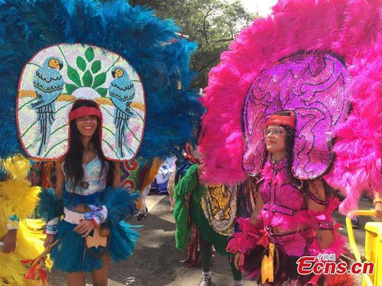 图片:巴西圣保罗狂欢节庆祝活动