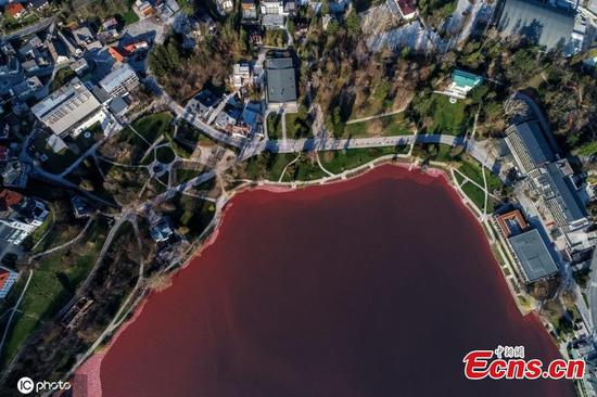 Lake Bled in Slovenia turns red