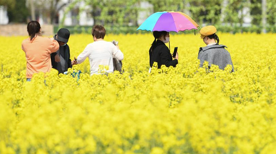 Tourists enjoy a golden sea of rapeseed flowers at a local scenic resort in Huzhou City, east China's Zhejiang Province, March 20, 2020. /Xinhua
