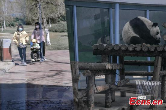 Zoo reopens in Tianjin