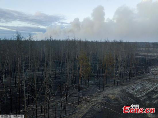 A view shows grass on fire in Lyudvynivka in Kiev Region