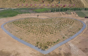 Medical assistance teams plant heart-shaped grove