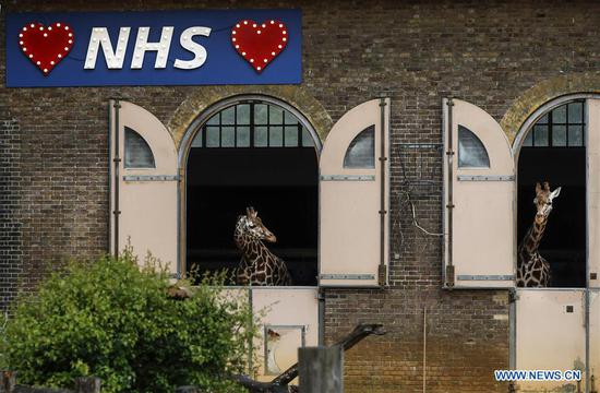 Illuminated sign in support of NHS seen at London Zoo