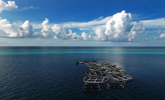 File photo shows a deepwater fish farming base near Meiji Reef of the Nansha Islands of China. (Xinhua/Zhao Yingquan)
