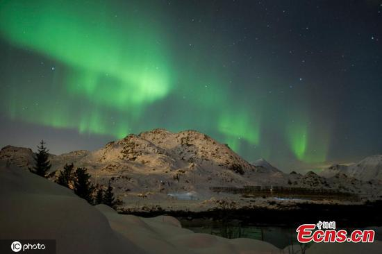 Enjoy the northern lights on the Lofoten Islands