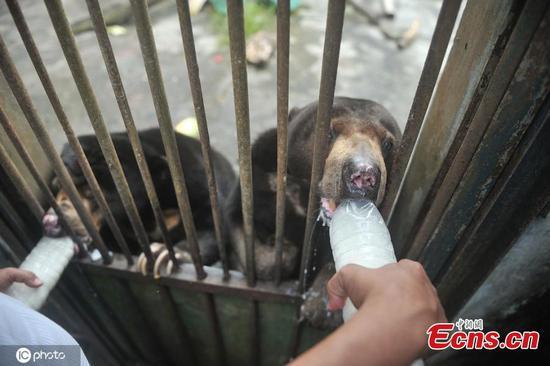 封闭式动物园里的动物依靠伸出援助之手
