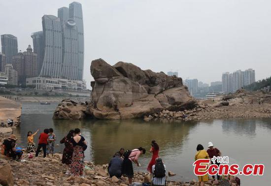 """重庆河水位下降,巨型""""乌龟""""浮出水面"""
